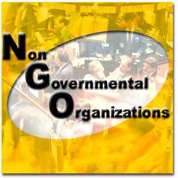 آئيننامه اجرايي تأسيس و فعاليت سازمانهاي غيردولتي