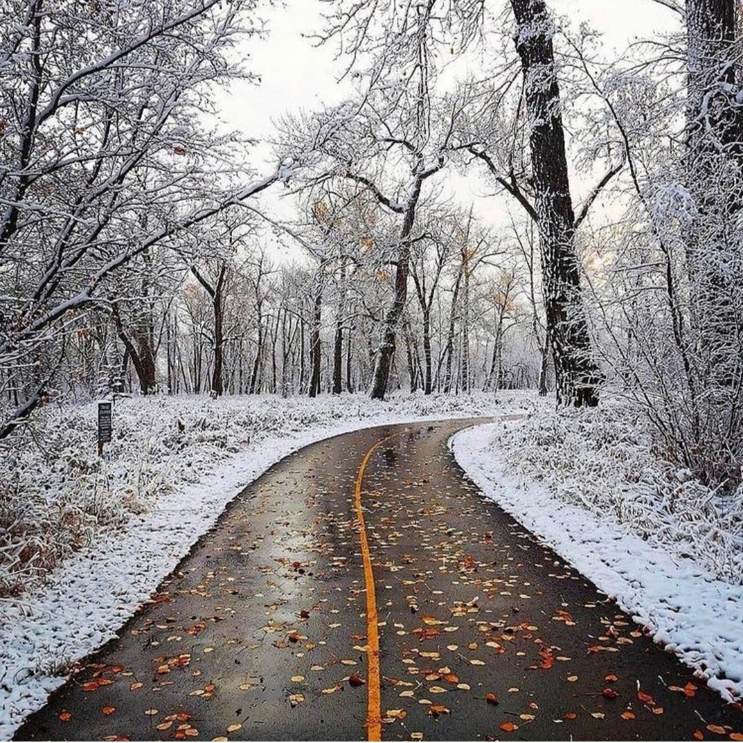 فصل پاییز با تمام زیبایی ها، شکوه و دلتنگی هایش رو به پایان است